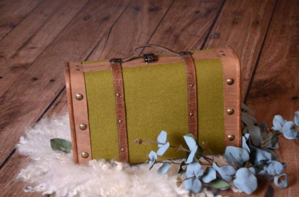 Green rustic suitcase