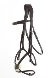 Glorioso Grackle Bridle