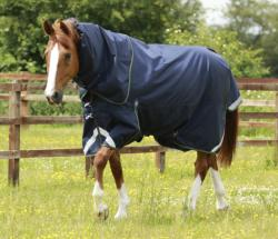 Titan 40g Turnout Rug with Neck Cover
